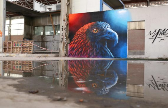 mural-en-pared-eagle